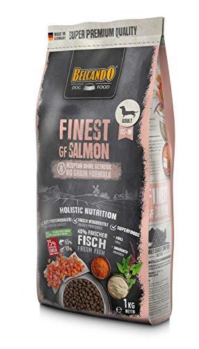 Belcando Finest GF Salmon [1 kg] getreidefreies Hundefutter | Trockenfutter für kleine & mittlere Hunde | Alleinfuttermittel für Hunde ab 1 Jahr