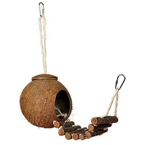 Sairis Cómodo diseño Lindo Concha de Coco Natural Casa de anidación de Aves Periquitos para Mascotas de tamaño pequeño Pinzones Gorriones Jaula con Escalera