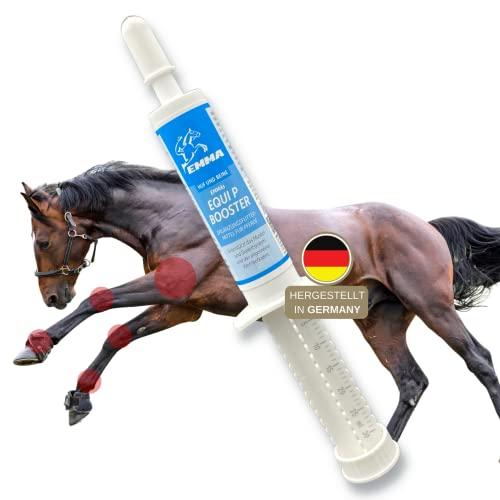 MSM Pferd I Equi P Booster I Gelenk-Paste Plus Glucosamin Chondroitin Weidenrinde I Vitamin C Bierhefe I Bewegungsapparat Gelenke Sehnen Bänder Knorpel I Agilität für Senioren Pferde 1St