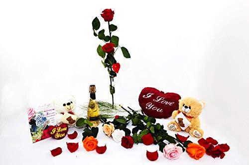 Rosen-Te-Amo – Konservierte echte rote Rose: Unvergängliche Blume mit Grußkarte zum Herunterladen; Infinity Rosen - Deko und Geschenk in neue verstärkte Verpackung - 9