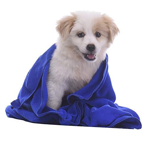 Ducomi - Toalla de microfibra para perros de 50 x 80 cm – Paño absorbente de ducha para secar perros, gatos y animales domésticos ultra absorbentes para tallas pequeñas y medianas (juego de 2)