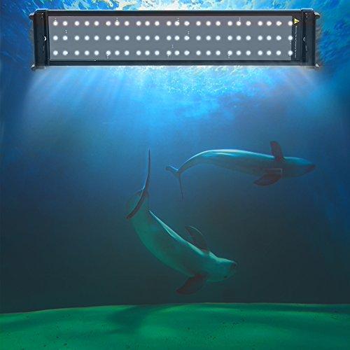 Zerone Aquarium Lampe LED, 96cm / 74cm /51cm / 30cm Rampe LED pour Aquarium d'Eau Douce et de Mer Lumière Aquarium Plantes 144LED / 108LED / 72LED / 36LED Eclairage Lampe LED Blanc et Bleu (51cm)