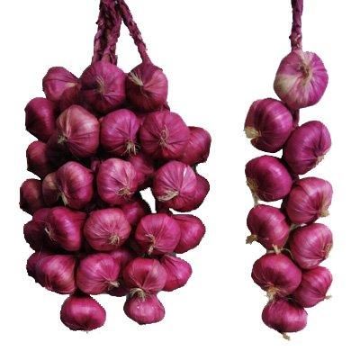 Calcfifer Künstlicher Früchte-/ Gemüsestrang, Dekoration für Restaurant/ Hotel/ Zuhause/ Garten onion : 10 bulbs