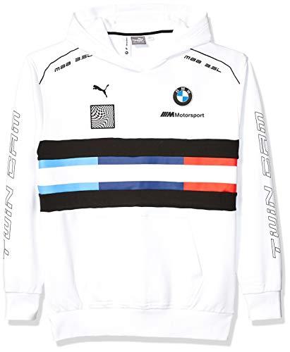 Motorsport Men's BMW Pullover Hoodie, Large, PUMA Black