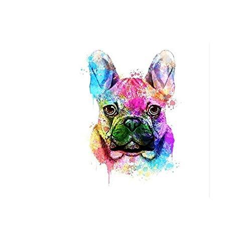 zhxx Malen Nach Zahlen Erwachsene Eine Farbige Bulldogge Tierhochzeit Ation Kunstbild Geschenk Leinwand AcrylFür Anfänger Mit Rahmen 40X50Cm