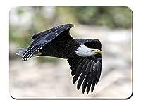 イーグル飛行、黒翼 パターンカスタムの マウスパッド 動物 (22cmx18cm)