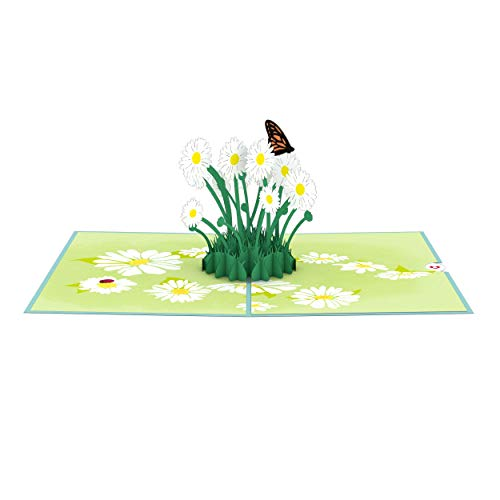 Lovepop Daisy Patch Pop Up Card - 3D Card, Easter Pop Up Card,Mother's Day Card, Spring Card, Card for Mom, Mom Card, Greeting Card, Card for Wife, Flower Card, Appreciation Card Photo #3