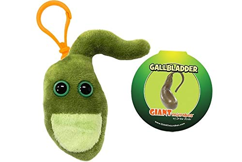 【胆のう】 ジャイアントマイクロブス GIANT Microbes 臓器 ぬいぐるみ マスコット