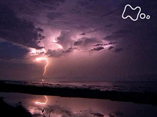 「驚異!世界一の雷多発地帯~ベネズエラ・マラカイボ湖~」