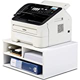 FITUEYES Printer Stands with Storage, Paper Organizer for Home & Office, 2-Tier Printer Riser, DO204701WB