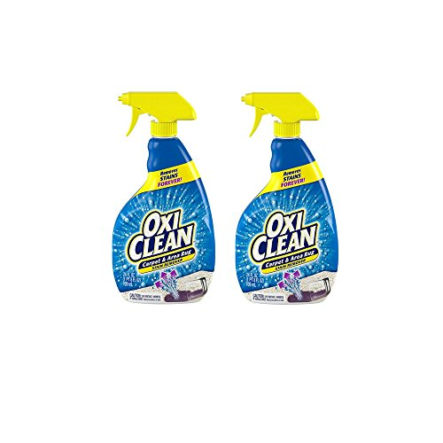 OxiClean Carpet and Area Rug Stain Remover Spray, 24 Ounce 2 Pack