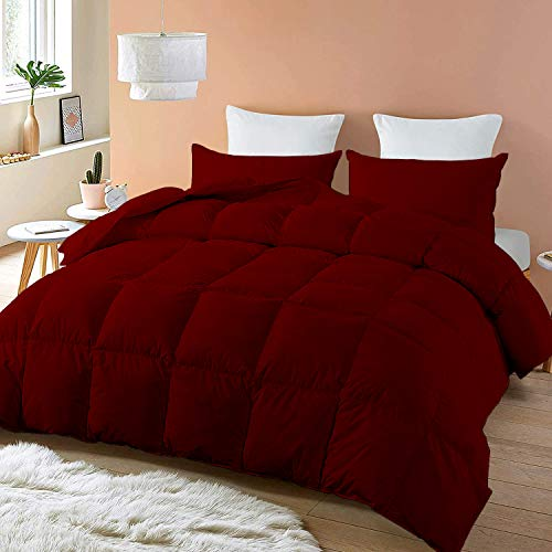 All-Season – Luxury 1000 Thread Count Egyptian Cotton Eastern King 116x108 Size Down Alternative Quilted 3 Pieces Comforter Set, 600 GSM Microfiber Fill - Machine Washable, Burgundy Solid