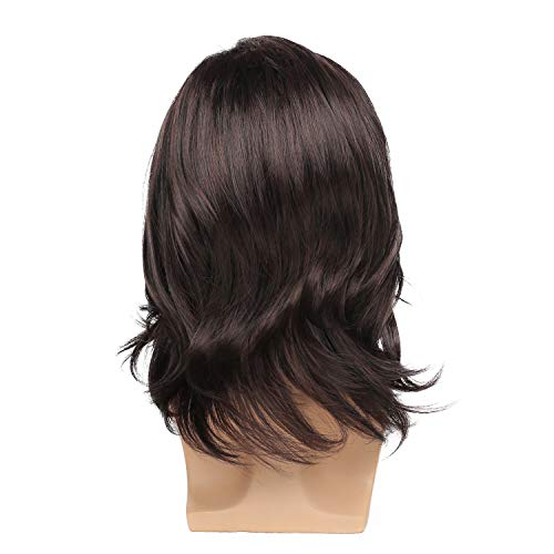 Kaneles Men's Wig Dark Brown Long Curly Natural Hair Wig Halloween Costume Cospaly Party Wigs