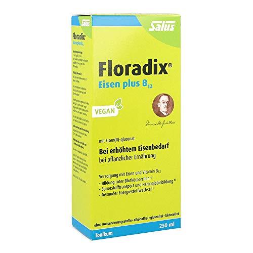 Floradix Eisen plus B12 vegan Tonikum 250 ml