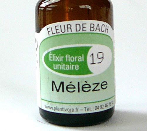 FLEUR DE BACH N°19 MELEZE (LARCH) - BIO 10ml