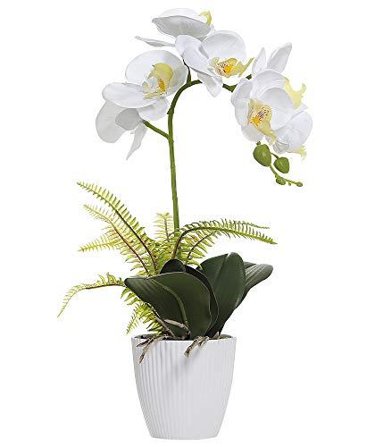 Omygarden Künstliche Orchidee mit weißem Topf, Phalaenopsis, künstliche Kunststoff-Orchidee, Dekoration für Zuhause, Büro, Hochzeitssträuße (weißer 1 Strauß)