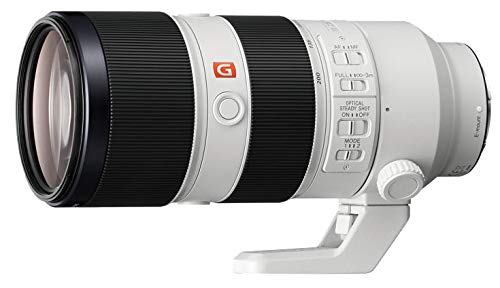 ソニー SONY ズームレンズ FE 70-200mm F2.8 GM OSS Eマウント35mmフルサイズ対応 SEL70200GM