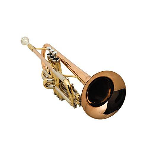 Qiaoxianpo01 Trompete, Anfänger Spielen Grading Professionelle Trompete, B Trompete 16B Phosphor Bronze,, Blasinstrument ( Color : Gold )