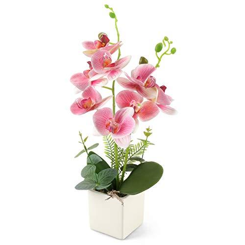 Yobansa Dekorative echte Berührung gefälschte Orchidee Bonsai künstliche Blumen mit Keramik Blumentöpfe Phalaenopsis Blumenarrangements für Home Decoration (Pink 0B)