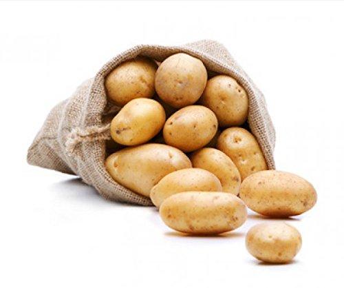 FRUCHTVERSAND24® BIO Kartoffeln, Sorte: Linda (Speisekartoffeln), Inhalt: 12,5kg, sehr gelbfleischig, lagerfähige Premiumqualität direkt vom Erzeuger