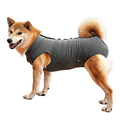 Dog Recovery Suit Cat Abdominal Wound Protector Puppy Medical Surgical Clothes Post-operative Vest Pet After Surgery Wear Substitute E-collar & Cone (XL, grey)