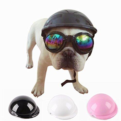 LA VIE Cosplay Casco Moda de ABS para Mascotas Perros Pequeños con...