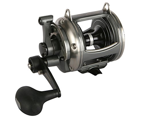 Top 10 Best 2 Speed Fishing Reel Okuma Comparison
