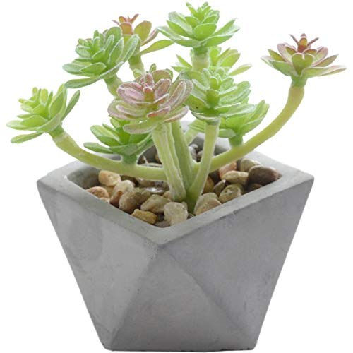 Kilo-24K Fake Succulent Plants Decorative Artificial Faux Succulents Plastic Mini Potted Fake Succulents Flower for Garden Arrangement Decor