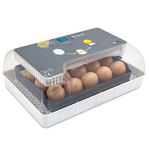 Jumbl Clear Egg Incubator, Fully Automatic Digital Poultry Hatching Machine, Temperature Control & Automatic Egg Turner, LED Candler, Mini 12-35 Egg Incubator Breeder for Chicken, Ducks, Birds & More