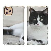 iPhone 6s Plus ベルトなし 手帳型 スマホケース スマホカバー bn767(C) 猫 ねこ ネコ 動物 アニマル アイフォン6sプラス アイフォンシックスsプラス スマートフォン スマートホン 携帯 ケース アイホン6sプラス アイホンシックスsプラス 手帳 ダイアリー フリップ スマフォ カバー