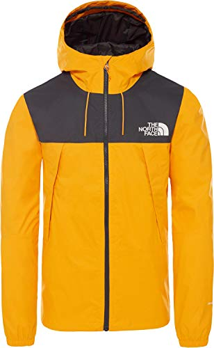 The North Face Blousons ete 2s51 1990...
