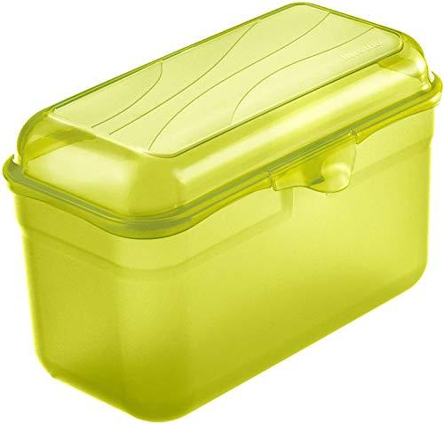 Rotho Fun Vesperdose 1.75l mit Klickverschluss, Kunststoff (PP) BPA-frei, grün, 1,75l (19,5 x 10,5 x 12,5 cm)