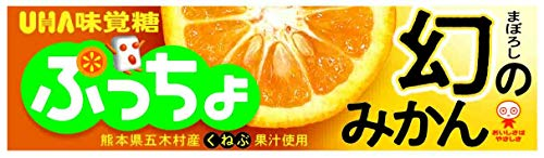 UHA味覚糖 ぷっちょスティック 幻のみかん 10粒 ×10個