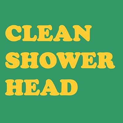 Best Way To Clean Shower Head
