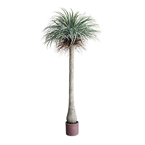 BOWCORE 150cm plástico Tropical Las Plantas