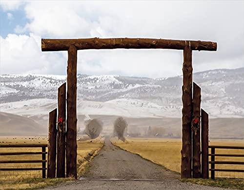 PANILUR Kits de pintura de diamantes 5D para adultos y niños, Big Log Gate Lane, Montana, rancho de ganado en invierno, campo, colinas, cielo nublado, artesanía de diamantes de imitación de cristal p