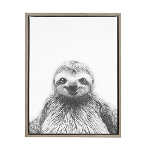 Framed Sloth Portrait