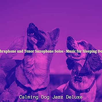 Vibraphone and Tenor Saxophone Solos - Music for Sleeping Dogs
