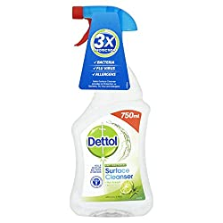 Dettol Antibacterial Surface Cleaning Spray, Lime and Mint, 750 ml