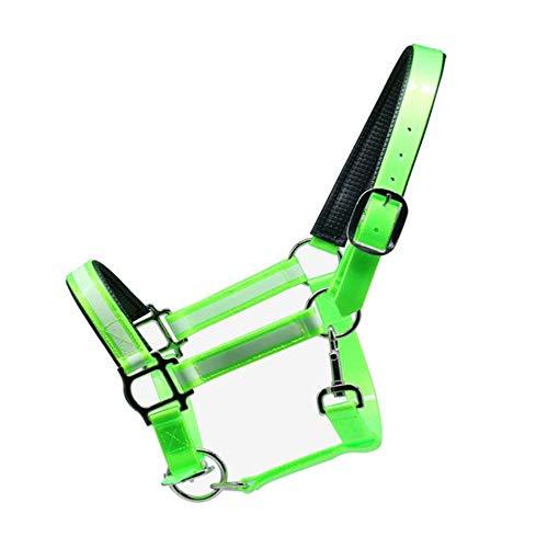 Luminous Briglia TPU Regolabile, Resistente allo Sporco E Facile da Pulire Equestrian Sporting Goods, per Equitazione/Salsa/Ippica,Verde