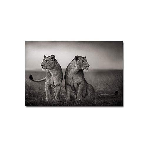 wzgsffs African Two Lions Poster Wild Freedom Animal Art Canvas Painting Cuadro de Pared para Dormitorio Sala de Estar Decoración del hogar-20x40 Pulgadas Sin Marco