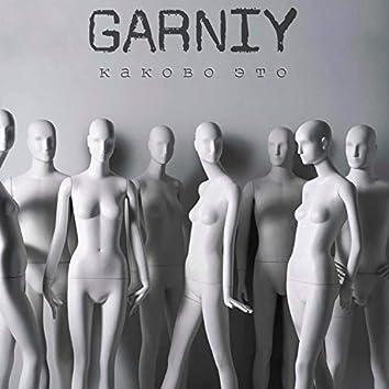 Garniy