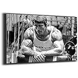 Tankaa Arnold Schwarzenegger Poster Schwarzenegger