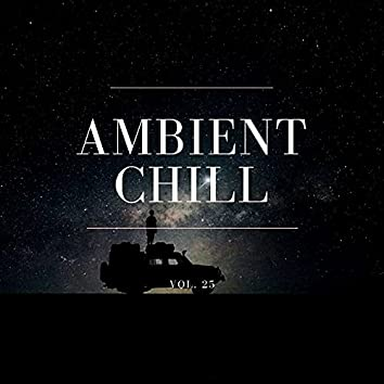 Ambient Chill, Vol. 25