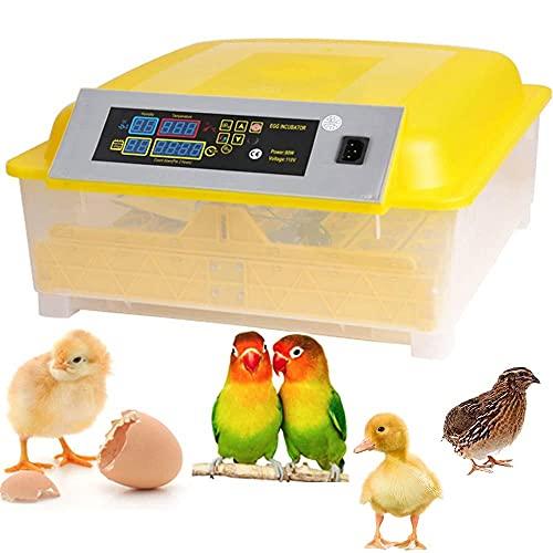 Incubadora Automática de 48 Huevos con Pantalla Digital, Giro Automático de Huevos et Control de Temperatura, Incubadora para Incubar Gallinas, Patos, Codornices (48 Huevos)