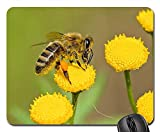 Mouse Pad - Honey Bee Bee Insect Nature Animal 1