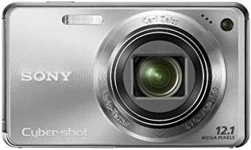 Sony Cyber-shot DSC-W290 12.1 MP Digital Camera with 5x Optical Zoom and Super Steady Shot Image Stabilization (Silver)