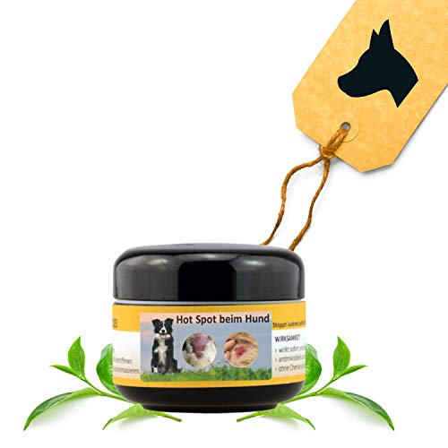Peticare Pflege Balsam bei Hot-Spot für Hunde - Beruhigt & unterstützt die Heilung der Haut bei Allen Arten Hot-Spots, Ekzemen, stoppt Juckreiz, Lecken, 100% natürliche Salbe - petDog Health 2109