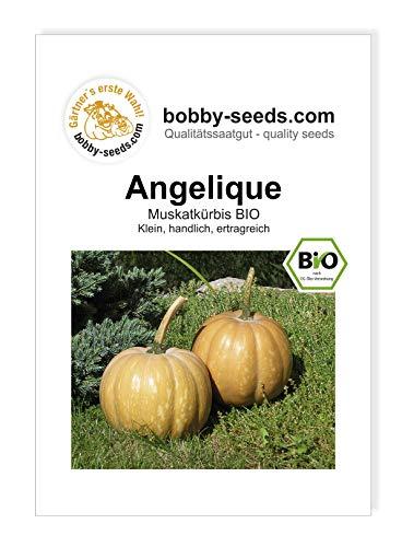 Gärtner's erste Wahl! bobby-seeds.com - Obstsamen & -pflanzen, Größe Portion