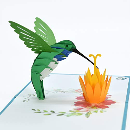 CUTPOPUP Hummingbird Card Pop Up, 3D Blue Throated Hummingbird Birthday Card Pop Up- Ideal Gift For Grandma, Mom, Mother In Law, Daughter, Son, Kids On Birthday, Mother's Day, Greeting, Christmas